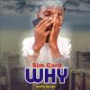 Sim Card - WHY (Mixed by Sim Card)