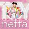 Netta - TOY (Roberto Ferrari Remix)