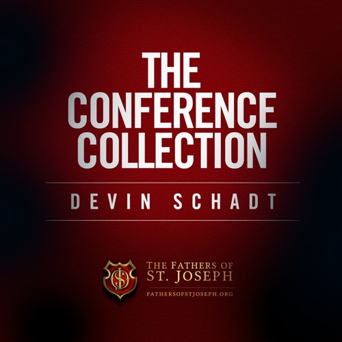 THE CONFERENCE COLLECTION  |  DEVIN SCHADT