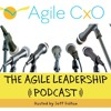 Agile Leadership Podcast Interview with Josh Jackman, State of Idaho