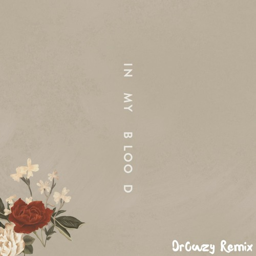 Download Shawn Mendes - In My Blood [Dr0wzy Remix]
