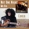 Mr. Big - Not One Night  Cover By Nunu