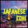 Japanese EDM Mix