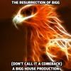 The Resurrection Of Bigg (Don't Call It A Comeback)