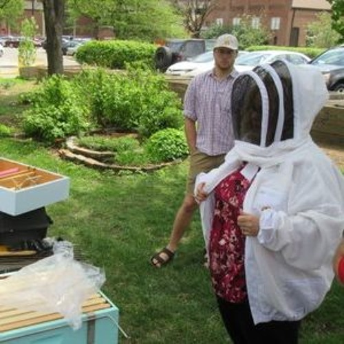 Sustainability Now! | Betsy Ramey + Lara Augustine | Kentuckiana Beekeepers Assoc. | Mar. 26, 2018