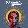 Janelle Monáe Make Me Feel Dj Snatch Rework Mp3