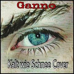 Kalt wie Schnee Cover Fard (Prod. by Feelo)