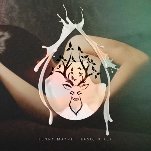 Benny Mayne - Basic Bitch