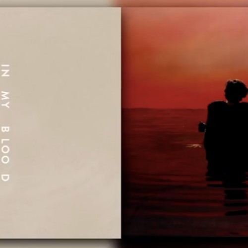Download Sign In My Blood - Harry Styles And Shawn Mendes