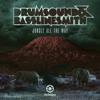 Drumsound & Bassline Smith - Jungle All the Way