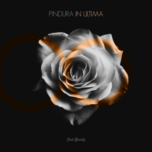 Pindura - In Ultima (Raavn Remix)