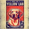 Bass Entity - Yellow Lab