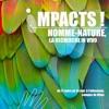 Impacts - Rémi Landois Et Jean-Pierre Garcia