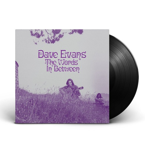 Dave Evans - The Words in Between