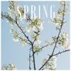 Spring (Free Download)