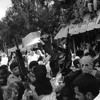 Download شيعوا الشهيد - أبو عرب Mp3