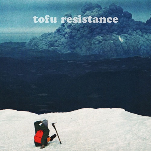 Tofu Resistance - After Dissolution