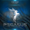 Can Unsal - Diver (Original Mix)[Pegasus Music]