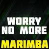 Worry No More Marimba Ringtone - Diplo
