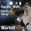 Harpin' Wolf & The Black Sheep - Early In The Mornin' (Studio Recording)