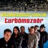 VitukiSchwarzmuzik-TURBOMOZSÁR - F. Zappa - Zoot allures/I'm the slime