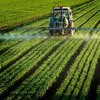 Dangers of Pesticide and Rise in Organic Farming