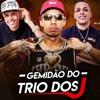MC's JUNIO - JF - (TRIO DOS J) - GEMIDAO DO TRIO DOS J ( DJ JOAO DA INESTAN )) Portada del disco