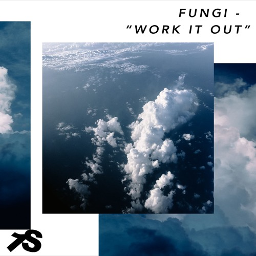 Fungi - Work It Out