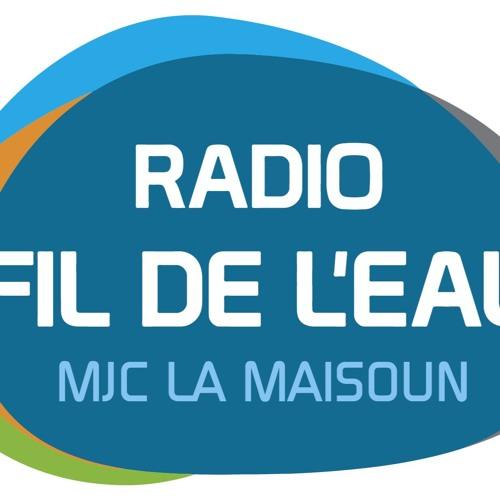 35 ANS d'autorisation, Micro-Trottoir à L'Isle-Jourdain