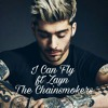 I-Can-Fly_ft_Zayn_(The chainsmokers)