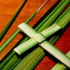 """It's All  About To Change!"" Palm Sunday, March 25, 2018"