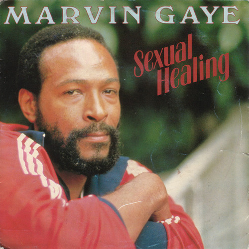 I Need To Love (marvin gaye - sexualing healing acapella)