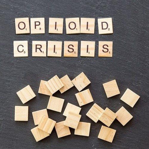 Interview with Dr. Lee Hoffer about the anthropology of the opioid crisis