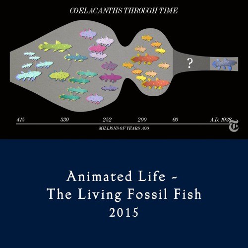 Animated Life - The Living Fossil Fish (2016)