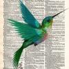 Hummingbird (DEMO)