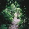 The Garden | Kari Jobe | Piano Cover