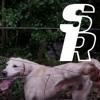 Scum Remover - Episode 2: Flo