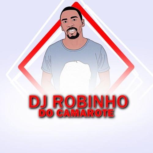 DJ Robinho do Camarote - Ritmo Quente 31 De Março 2018