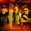 Ricky Martin FT Wisin y Yandel - Fiebre (Dj Javi Max XTD Remix)