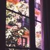 Chambre avec vue