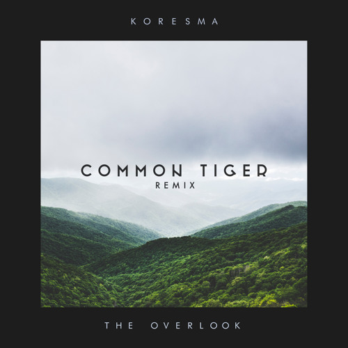 The Overlook (Common Tiger Remix)