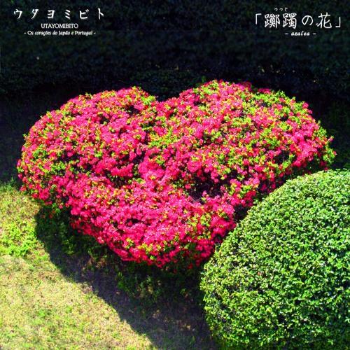 躑躅の花-azalea- ウタヨミビト 40sec