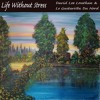 Life Without Stress -  Le Guitariste Du Nord