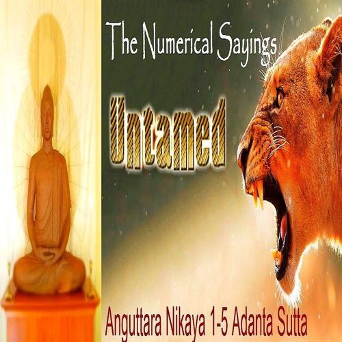 Untamed AN 1 - 4 What Buddha Said #4 Adanta Sutta