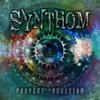 Synthom - Zero Sound 148 BPM E 16 Bit KaosM Sample