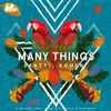 Santti & Kohen - Many Things (Club Mix)[OUT NOW]