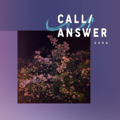 CALL/ANSWER