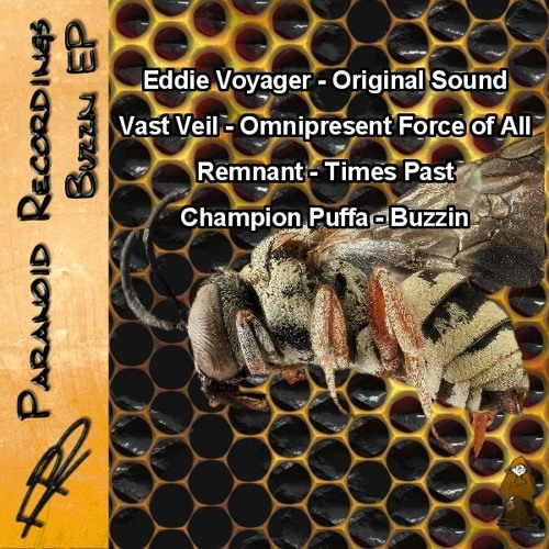 FREE DOWNLOAD - Buzzin EP _ Paranoid Recordings by