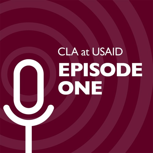 S1 Ep 1: How USAID is Hacking International Development from the Inside Out