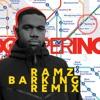 Ramz - Barking (Dots Per Inch Remix) Portada del disco